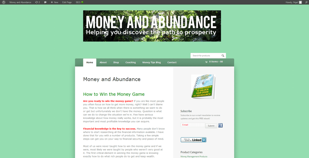 Money and Abundance home page 2